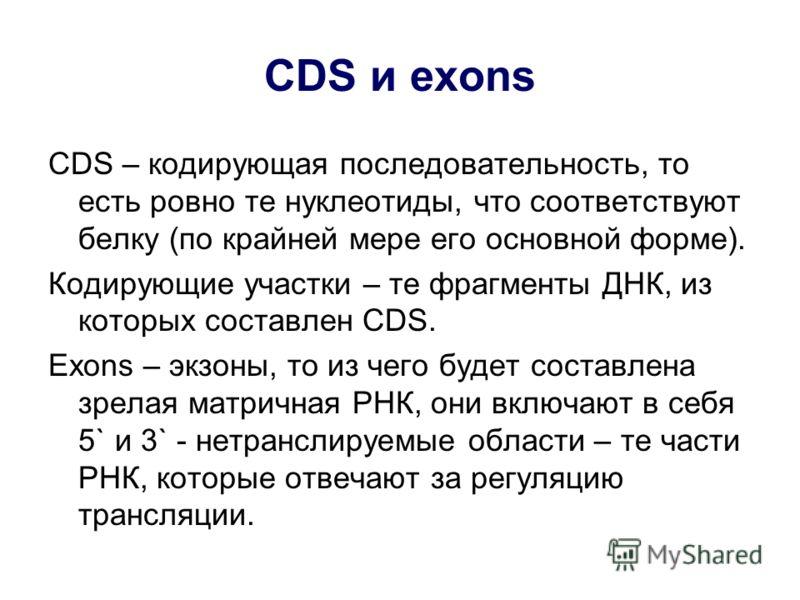 CDS и exons CDS – кодирующая последовательность, то есть ровно те нуклеотиды, что соответствуют белку (по крайней мере его основной форме). Кодирующие участки – те фрагменты ДНК, из которых составлен CDS. Exons – экзоны, то из чего будет составлена з
