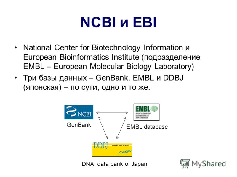 NCBI и EBI National Center for Biotechnology Information и European Bioinformatics Institute (подразделение EMBL – European Molecular Biology Laboratory) Три базы данных – GenBank, EMBL и DDBJ (японская) – по сути, одно и то же. GenBank EMBL database