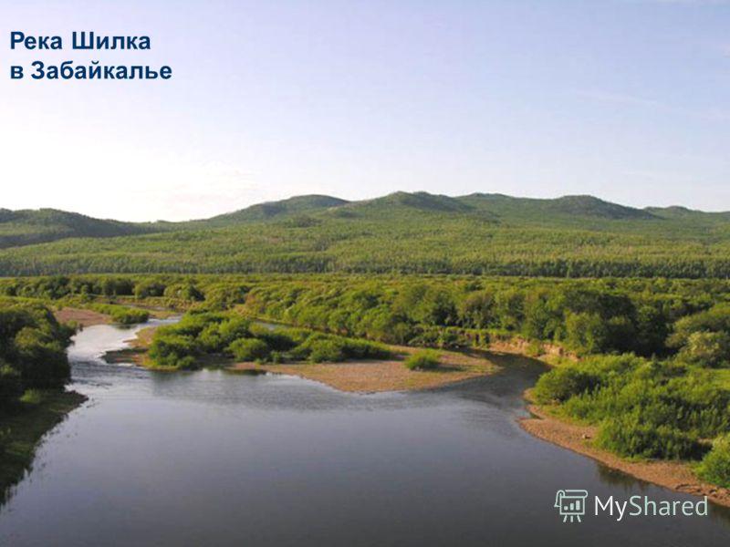 Река Шилка в Забайкалье