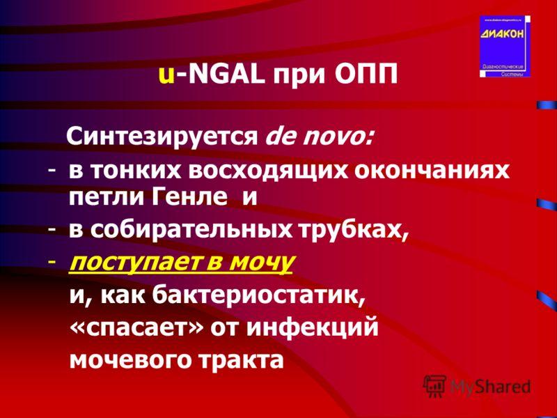 u-NGAL при ОПП Cинтезируется de novo: -в тонких восходящих окончаниях петли Генле и -в собирательных трубках, -поступает в мочу и, как бактериостатик, «спасает» от инфекций мочевого тракта