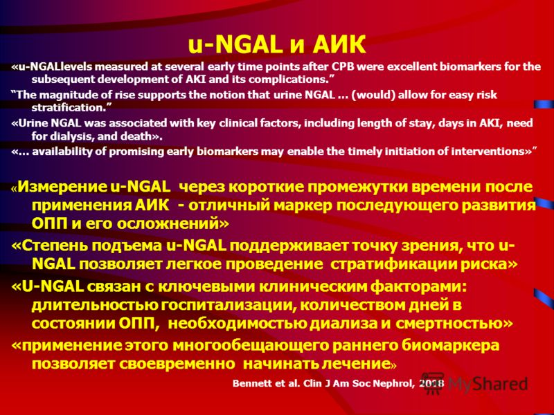 u-NGAL и АИК «u-NGALlevels measured at several early time points after CPB were excellent biomarkers for the subsequent development of AKI and its complications. The magnitude of rise supports the notion that urine NGAL … (would) allow for easy risk
