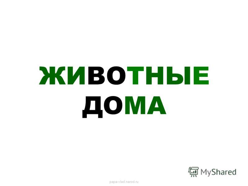ЖИВОТНЫЕ ДОМА papa-vlad.narod.ru