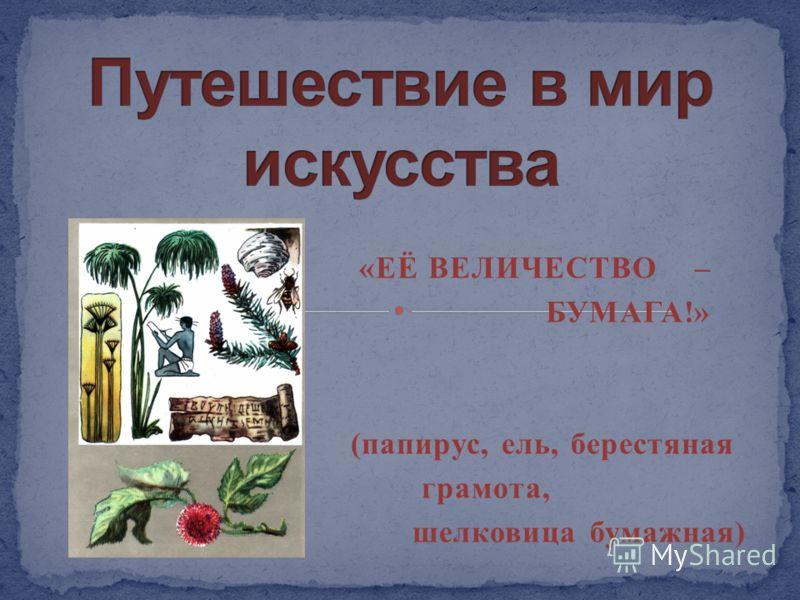 «ЕЁ ВЕЛИЧЕСТВО – БУМАГА!» (папирус, ель, берестяная грамота, шелковица бумажная)