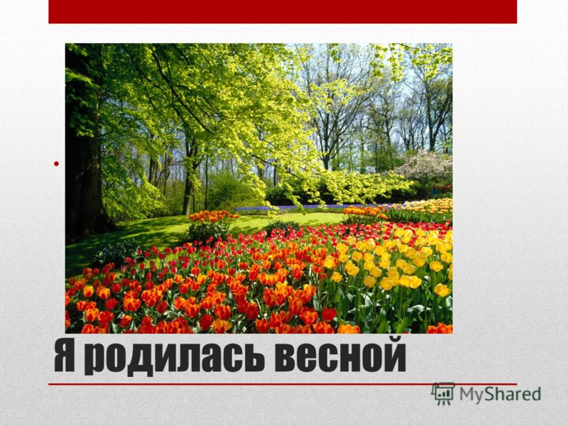 Я родилась весной 9 мая