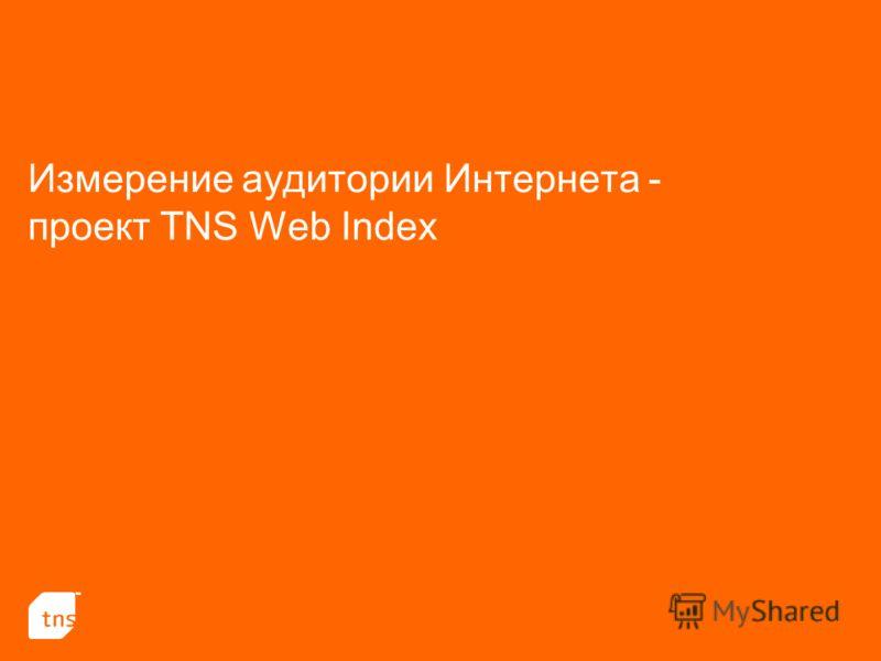 Измерение аудитории Интернета - проект TNS Web Index