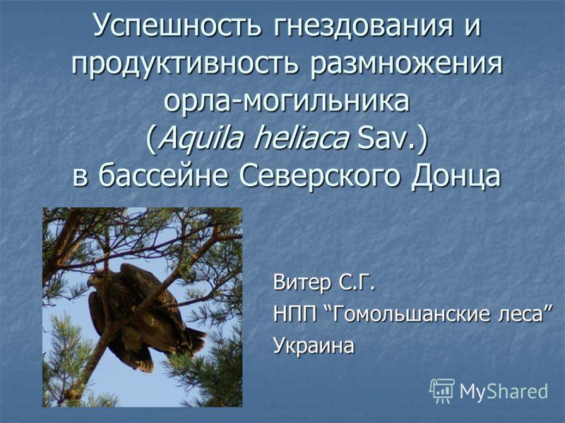 Успешность гнездования и продуктивность размножения орла-могильника (Aquila heliaca Sav.) в бассейне Северского Донца Витер С.Г. НПП Гомольшанские леса Украина