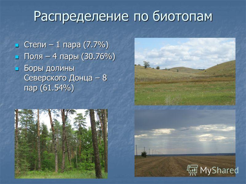 Распределение по биотопам Степи – 1 пара (7.7%) Степи – 1 пара (7.7%) Поля – 4 пары (30.76%) Поля – 4 пары (30.76%) Боры долины Северского Донца – 8 пар (61.54%) Боры долины Северского Донца – 8 пар (61.54%)