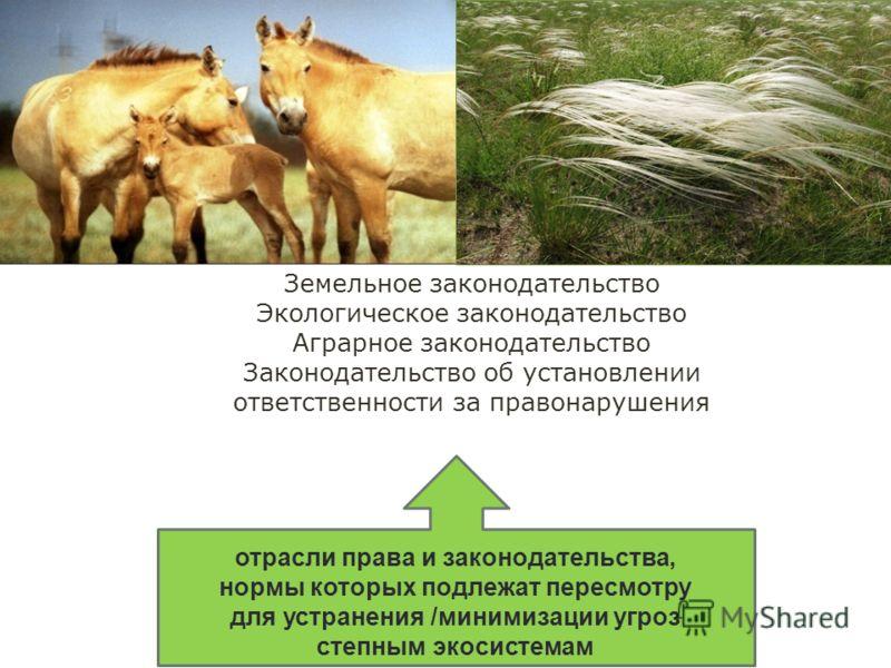 12 отрасли права и законодательства, нормы которых подлежат пересмотру для устранения /минимизации угроз степным экосистемам Земельное законодательство Экологическое законодательство Аграрное законодательство Законодательство об установлении ответств