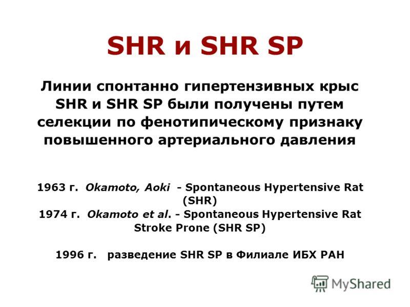 Линии спонтанно гипертензивных крыс SHR и SHR SP были получены путем селекции по фенотипическому признаку повышенного артериального давления 1963 г. Okamoto, Aoki - Spontaneous Hypertensive Rat (SHR) 1974 г. Okamoto et al. - Spontaneous Hypertensive
