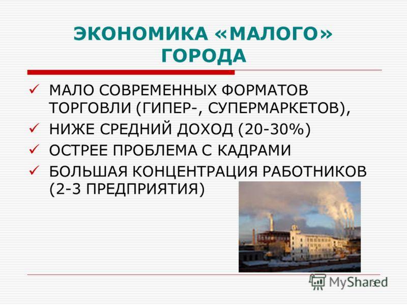 3 ЭКОНОМИКА «МАЛОГО» ГОРОДА МАЛО СОВРЕМЕННЫХ ФОРМАТОВ ТОРГОВЛИ (ГИПЕР-, СУПЕРМАРКЕТОВ), НИЖЕ СРЕДНИЙ ДОХОД (20-30%) ОСТРЕЕ ПРОБЛЕМА С КАДРАМИ БОЛЬШАЯ КОНЦЕНТРАЦИЯ РАБОТНИКОВ (2-3 ПРЕДПРИЯТИЯ)