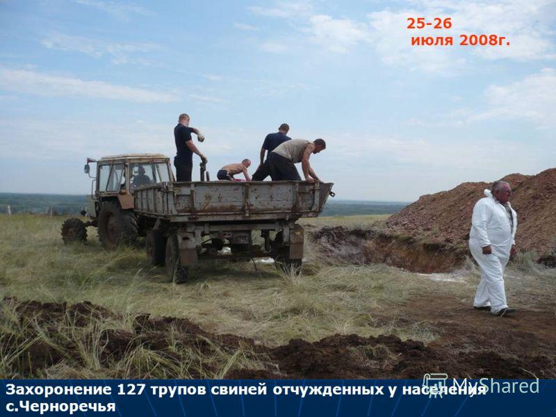 Захоронение 127 трупов свиней отчужденных у населения с.Черноречья 25-26 июля 2008г.