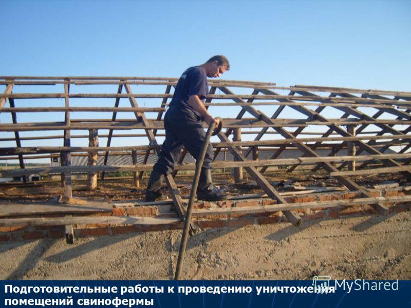 Подготовительные работы к проведению уничтожения помещений свинофермы