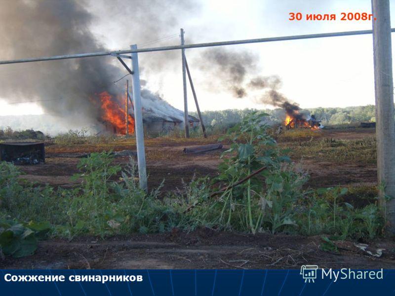 Сожжение свинарников 30 июля 2008г.