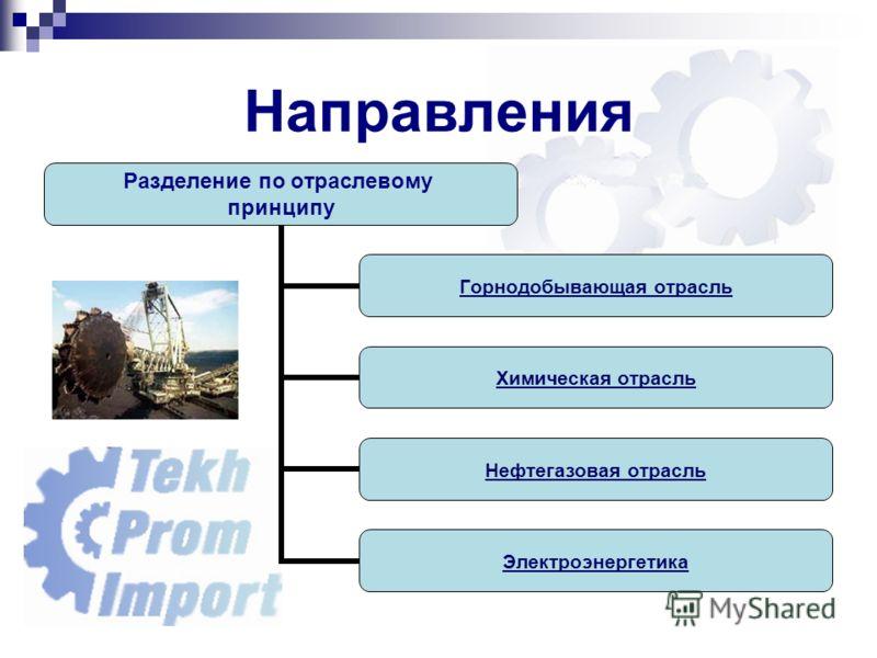 Направления Разделение по отраслевому принципу Горнодобывающая отрасль Химическая отрасль Нефтегазовая отрасль Электроэнергетика