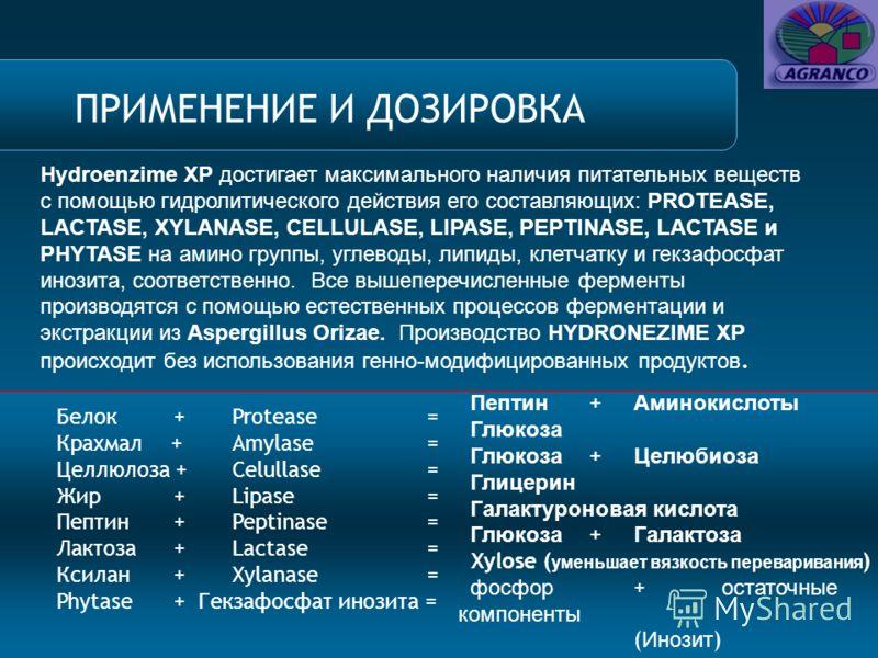 Белок +Protease = Крахмал +Amylase = Целлюлоза +Celullase = Жир +Lipase = Пептин +Peptinase = Лактоза +Lactase = Ксилан +Xylanase = Phytase + Гекзафосфат инозита = Пептин + Аминокислоты Глюкоза Глюкоза + Целюбиоза Глицерин Галактуроновая кислота Глюк