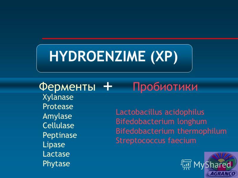 HYDROENZIME (XP) Ферменты + Пробиотики Xylanase Protease Amylase Cellulase Peptinase Lipase Lactase Phytase Lactobacillus acidophilus Bifedobacterium longhum Bifedobacterium thermophilum Streptococcus faecium