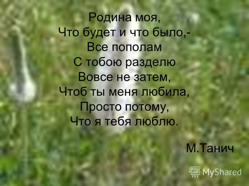 Я – гражданин России (классный час)