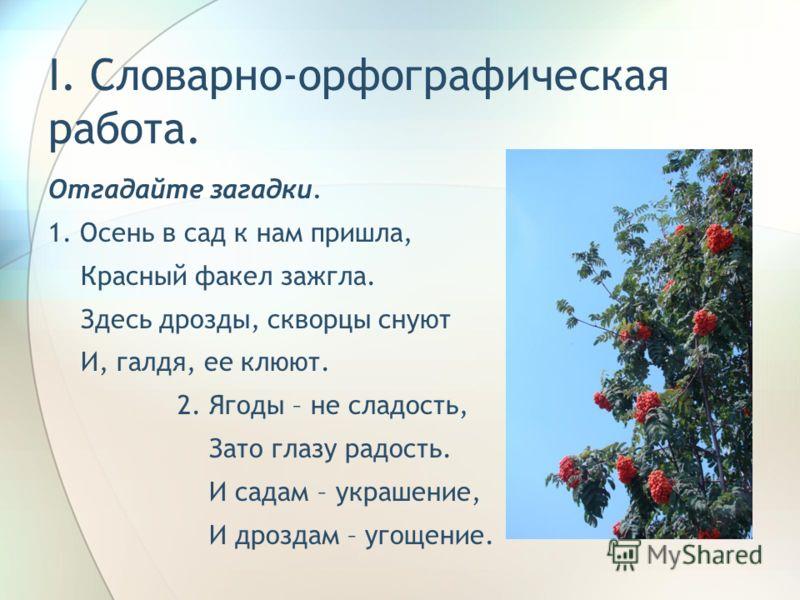I. Словарно-орфографическая работа. Отгадайте загадки. 1. Осень в сад к нам пришла, Красный факел зажгла. Здесь дрозды, скворцы снуют И, галдя, ее клюют. 2. Ягоды – не сладость, Зато глазу радость. И садам – украшение, И дроздам – угощение.