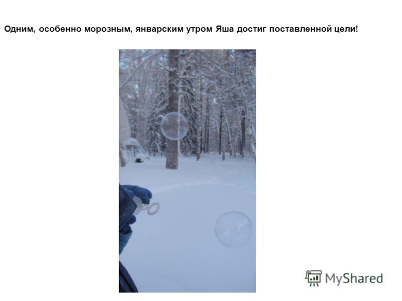 Одним, особенно морозным, январским утром Яша достиг поставленной цели!