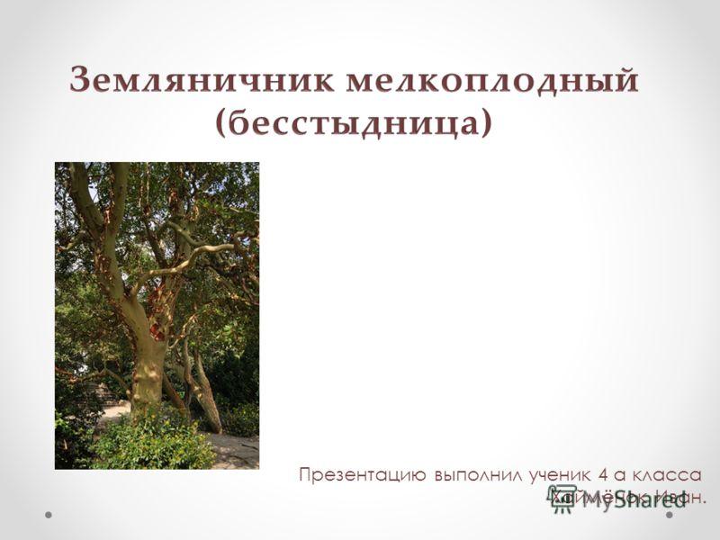 Презентацию выполнил ученик 4 а класса Хаймёнок Иван.