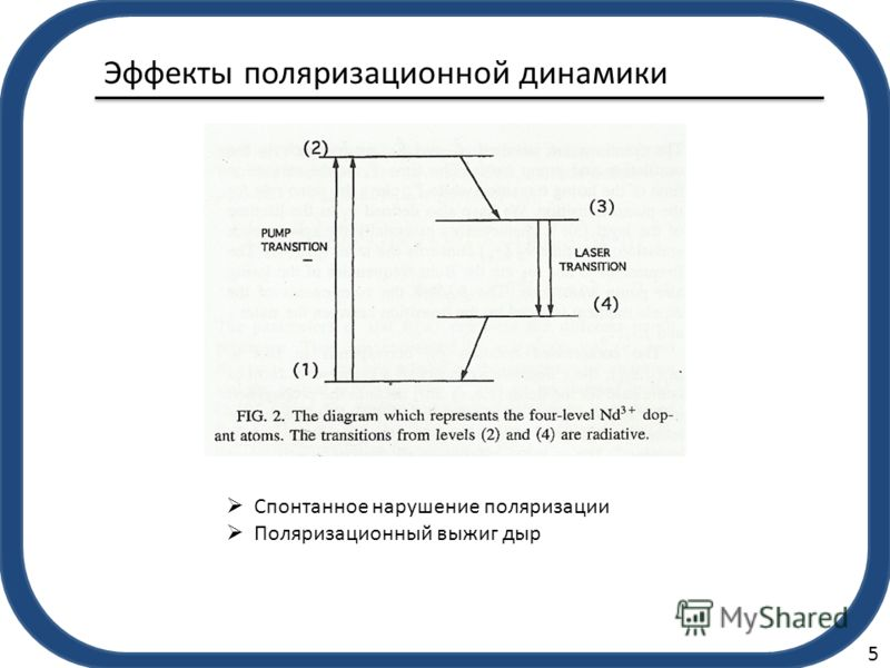 Эффекты поляризационной динамики Спонтанное нарушение поляризации Поляризационный выжиг дыр 5