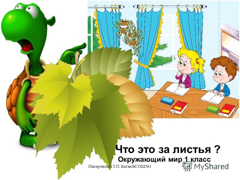 Писаревская Т.П. Баган БСОШ1 Что это за листья ? Окружающий мир 1 класс