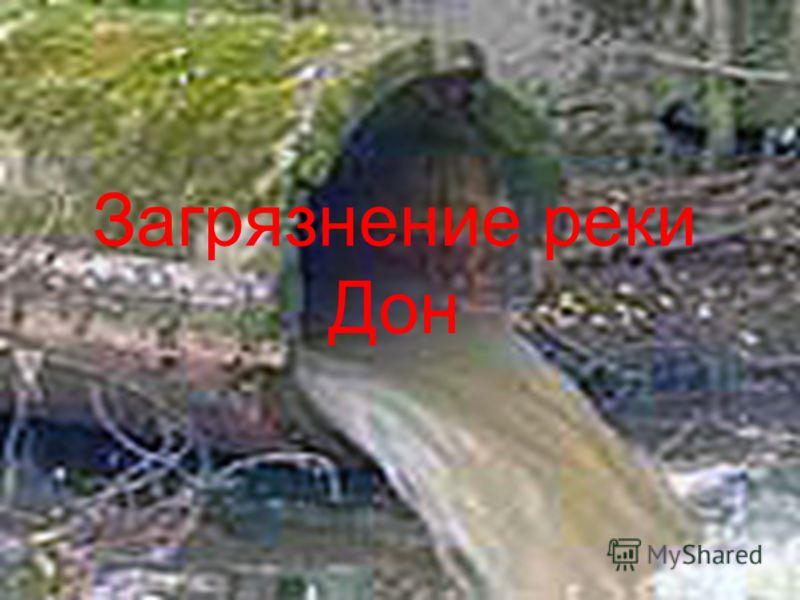 Загрязнение реки Дон