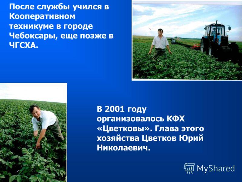 После службы учился в Кооперативном техникуме в городе Чебоксары, еще позже в ЧГСХА. В 2001 году организовалось КФХ «Цветковы». Глава этого хозяйства Цветков Юрий Николаевич.