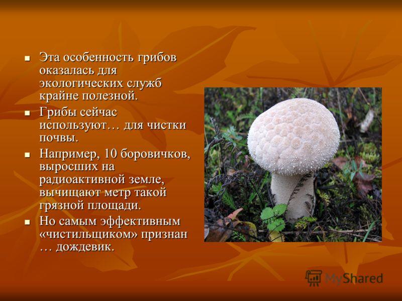 Эта особенность грибов оказалась для экологических служб крайне полезной. Эта особенность грибов оказалась для экологических служб крайне полезной. Грибы сейчас используют… для чистки почвы. Грибы сейчас используют… для чистки почвы. Например, 10 бор