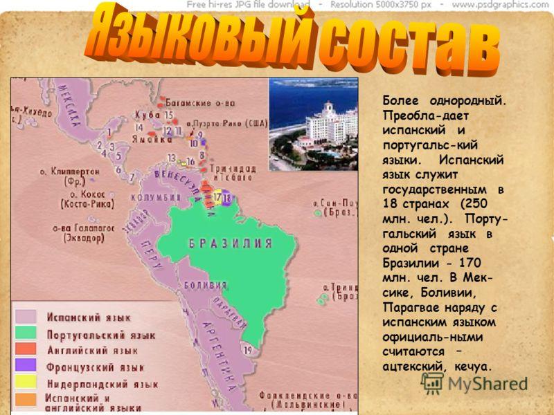 Более однородный. Преобла-дает испанский и португальс-кий языки. Испанский язык служит государственным в 18 странах (250 млн. чел.). Порту- гальский язык в одной стране Бразилии - 170 млн. чел. В Мек- сике, Боливии, Парагвае наряду с испанским языком