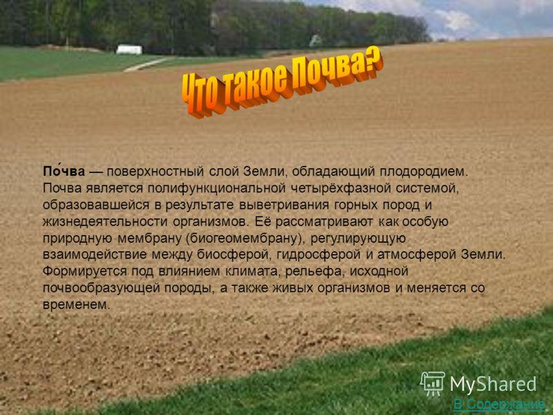 По́чва поверхностный слой Земли, обладающий плодородием. Почва является полифункциональной четырёхфазной системой, образовавшейся в результате выветривания горных пород и жизнедеятельности организмов. Её рассматривают как особую природную мембрану (б