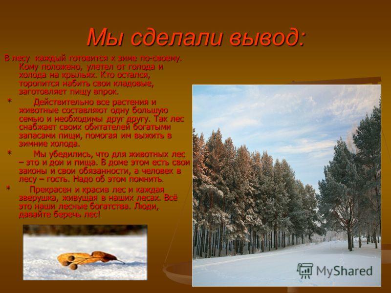 Мы сделали вывод: В лесу каждый готовится к зиме по-своему. Кому положено, улетел от голода и холода на крыльях. Кто остался, торопится набить свои кладовые, заготовляет пищу впрок. * Действительно все растения и животные составляют одну большую семь