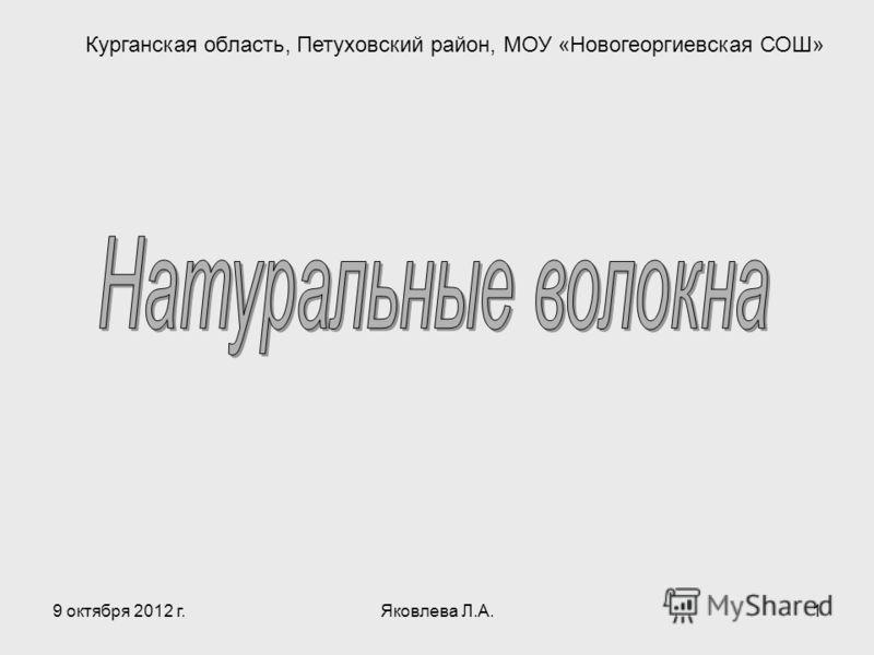 23 июля 2012 г.Яковлева Л.А.1 Курганская область, Петуховский район, МОУ «Новогеоргиевская СОШ»