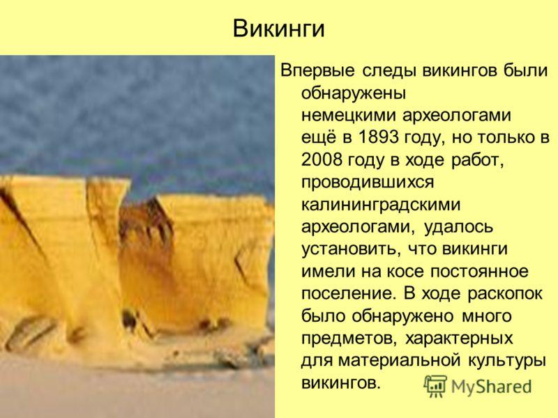 Викинги Впервые следы викингов были обнаружены немецкими археологами ещё в 1893 году, но только в 2008 году в ходе работ, проводившихся калининградскими археологами, удалось установить, что викинги имели на косе постоянное поселение. В ходе раскопок