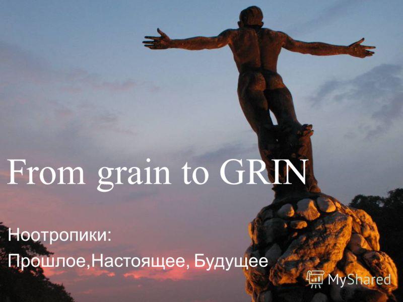 From grain to GRIN Ноотропики: Прошлое,Настоящее, Будущее