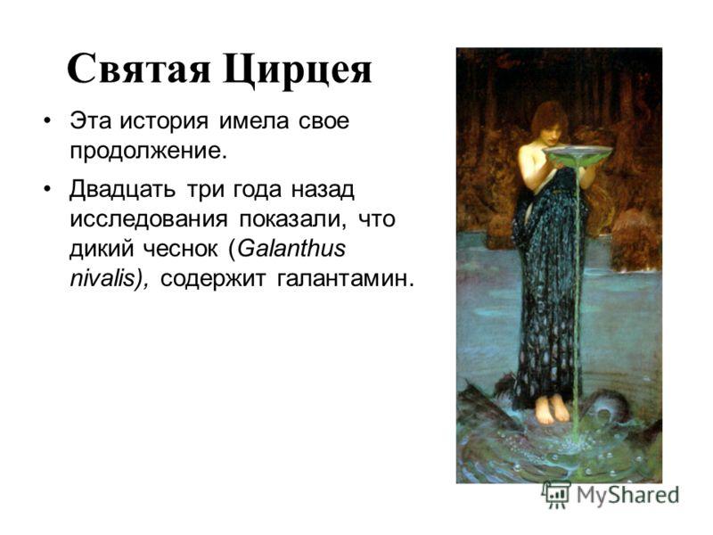 Святая Цирцея Эта история имела свое продолжение. Двадцать три года назад исследования показали, что дикий чеснок (Galanthus nivalis), содержит галантамин.