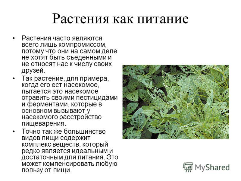Растения как питание Растения часто являются всего лишь компромиссом, потому что они на самом деле не хотят быть съеденными и не относят нас к числу своих друзей. Так растение, для примера, когда его ест насекомое, пытается это насекомое отравить сво