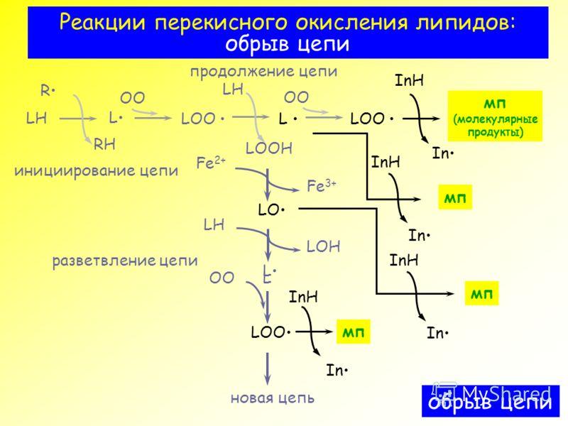 Реакции перекисного окисления
