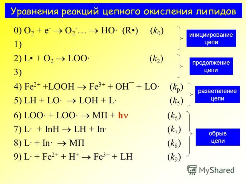 Уравнения реакций цепного окисления липидов 0) O 2 + e - O 2 - … HO· (R) (k 0 ) 1) инициирование цепи 2) L + O 2 LOO· (k 2 ) 3) продолжение цепи 4) Fe 2+ +LOOH Fe 3+ + OH¯ + LO· (k p ) 5) LH + LO· LOH + L·(k 5 ) разветвление цепи 6) LOO· + LOO· МП +