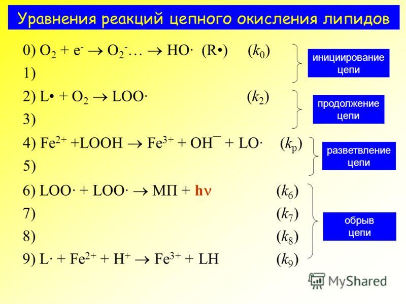 Уравнения реакций цепного окисления липидов 0) O 2 + e - O 2 - … HO· (R) (k 0 ) 1) инициирование цепи 2) L + O 2 LOO· (k 2 ) 3) продолжение цепи 4) Fe 2+ +LOOH Fe 3+ + OH¯ + LO· (k p ) 5) разветвление цепи 6) LOO· + LOO· МП + h (k 6 ) 7) (k 7 ) 8) (k