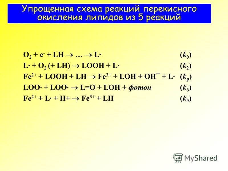 Упрощенная схема реакций перекисного окисления липидов из 5 реакций O 2 + е - + LH … L·(k 0 ) L· + O 2 (+ LH) LOOH + L· (k 2 ) Fe 2+ + LOOH + LH Fe 3+ + LOH + OH¯ + L·(k p ) LOO· + LOO· L=O + LOH + фотон(k 6 ) Fe 2+ + L· + H+ Fe 3+ + LH(k 9 )