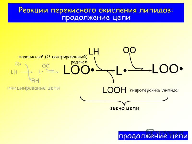 Реакции перекисного окисления липидов: продолжение цепи ?????????? ??? RH OO LOO LH LOOH R L L LH инициирование цепи OO продолжение цепи LOO звено цепи перекисный (О-центрированный) радикал гидроперекись липида