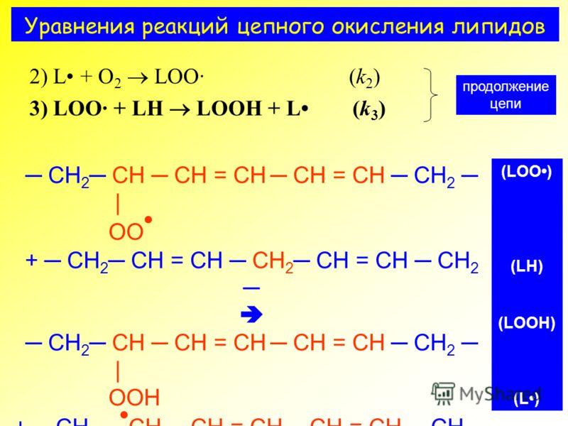 Уравнения реакций цепного окисления липидов 2) L + O 2 LOO· (k 2 ) 3) LOO· + LH LOOH + L (k 3 ) продолжение цепи CH 2 CH CH = CH CH = CH CH 2 | OO + CH 2 CH = CH CH 2 CH = CH CH 2 CH 2 CH CH = CH CH = CH CH 2 | OOH + CH 2 CH CH = CH CH = CH CH 2 (LOO