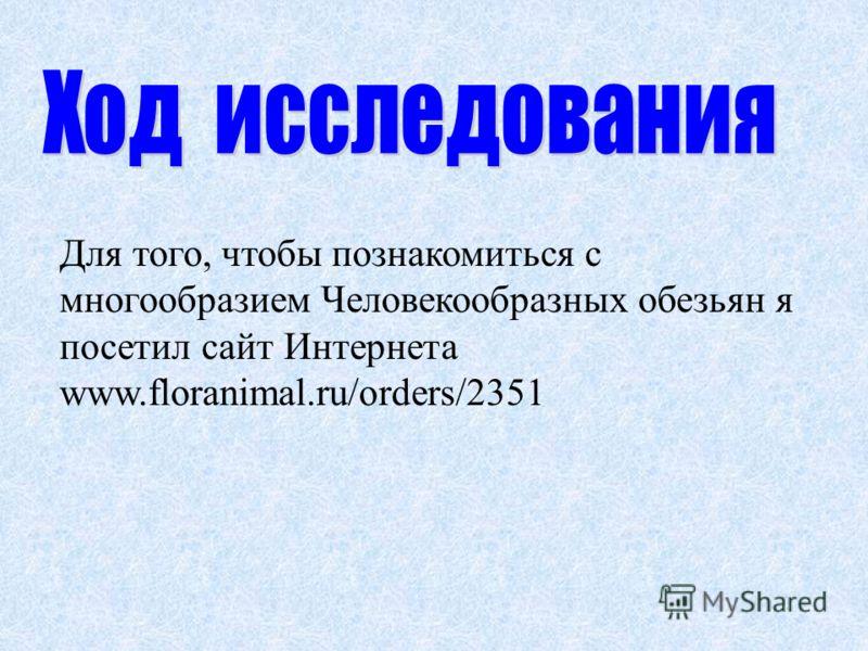 Для того, чтобы познакомиться с многообразием Человекообразных обезьян я посетил сайт Интернета www.floranimal.ru/orders/2351