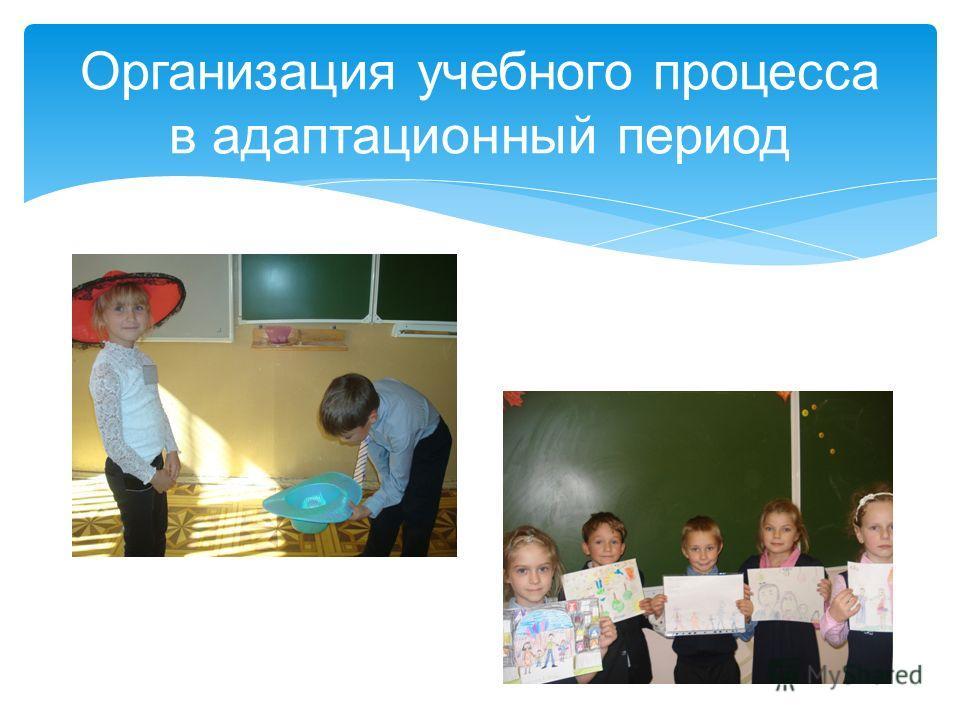 Организация учебного процесса в адаптационный период