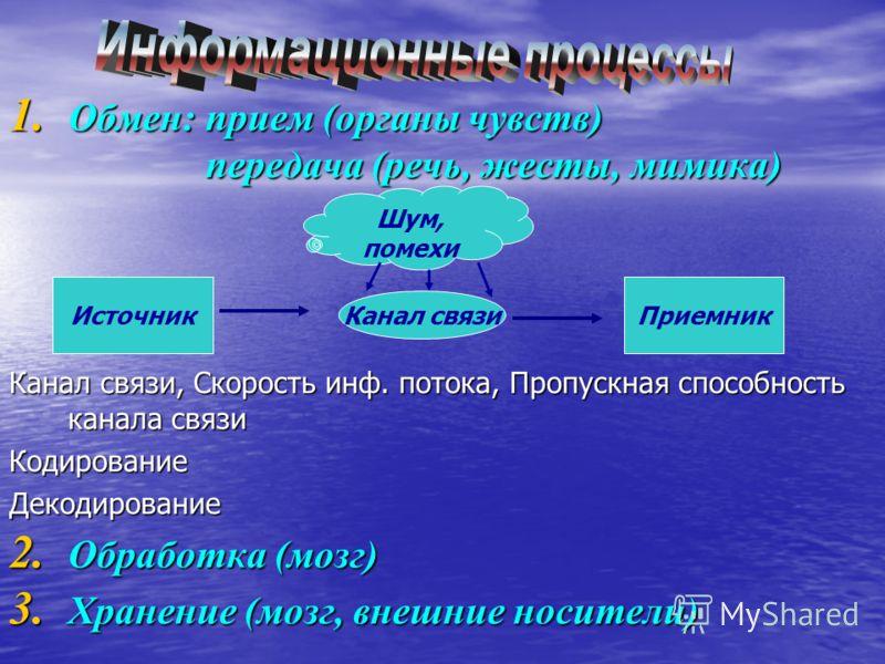 1. Обмен: прием (органы чувств) передача (речь, жесты, мимика) Канал связи, Скорость инф. потока, Пропускная способность канала связи КодированиеДекодирование 2. Обработка (мозг) 3. Хранение (мозг, внешние носители) ИсточникПриемник Канал связи Шум,
