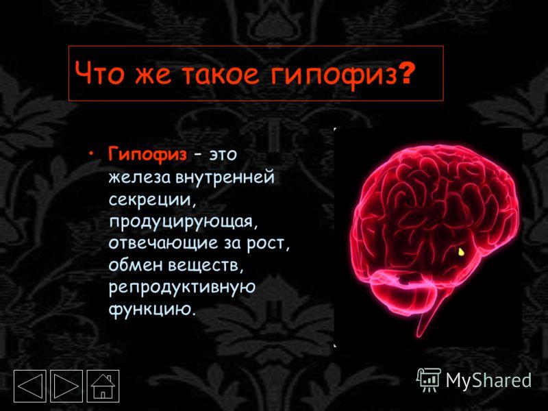 Что же такое гипофиз ? Гипофиз - это железа внутренней секреции, продуцирующая, отвечающие за рост, обмен веществ, репродуктивную функцию.