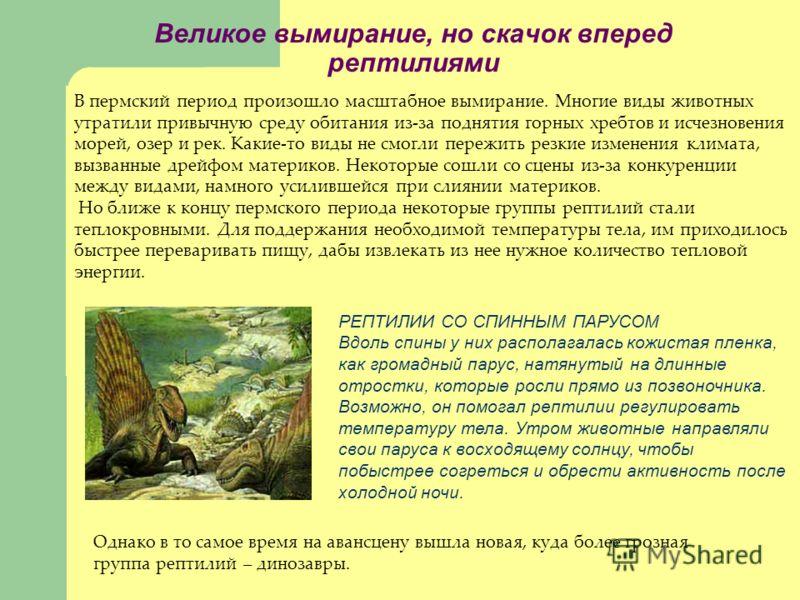 Великое вымирание, но скачок вперед рептилиями В пермский период произошло масштабное вымирание. Многие виды животных утратили привычную среду обитания из-за поднятия горных хребтов и исчезновения морей, озер и рек. Какие-то виды не смогли пережить р