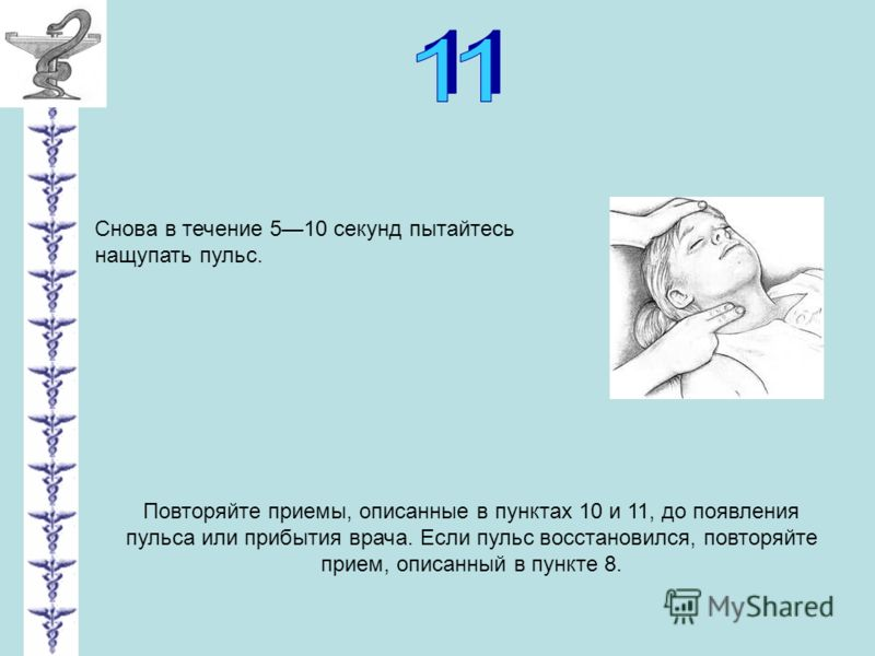 Снова в течение 510 секунд пытайтесь нащупать пульс. Повторяйте приемы, описанные в пунктах 10 и 11, до появления пульса или прибытия врача. Если пульс восстановился, повторяйте прием, описанный в пункте 8.