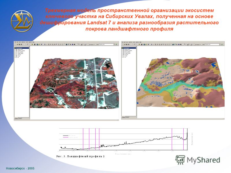 Новосибирск - 2005 Трехмерная модель пространственной организации экосистем ключевого участка на Сибирских Увалах, полученная на основе дешифрирования Landsat 7 и анализа разнообразия растительного покрова ландшафтного профиля